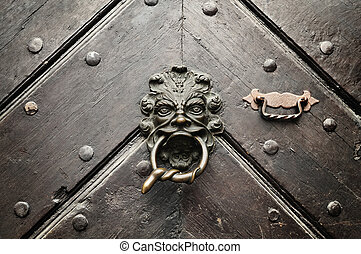 Fearsome Door Knocker - A lion door knocker with a snake...