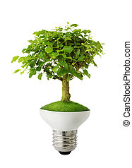 Green energy concept - Green tree growing out of a bulb -...