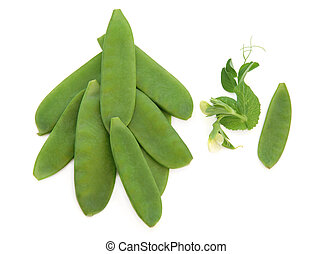 Mangetout Peas - Mange tout snow pea pods with flower and...
