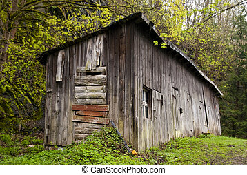 Shed in Harz Mountains, Germany