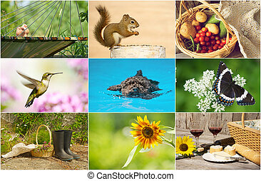 Colorful summer themed collage