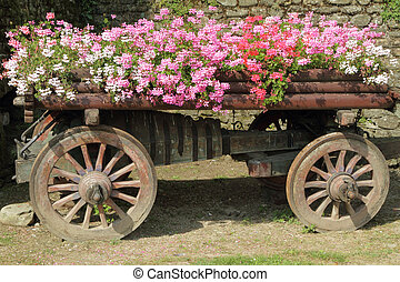 wooden cart full of flowers - wooden cart full of pink, red...