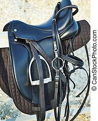 dressage saddle and  bridle