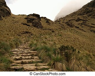 Descending Inca trail
