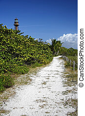 Beach Trail on Sanibel Island, South Florida