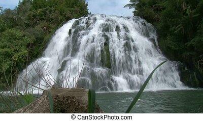 Owaroha Falls Corromandel 1