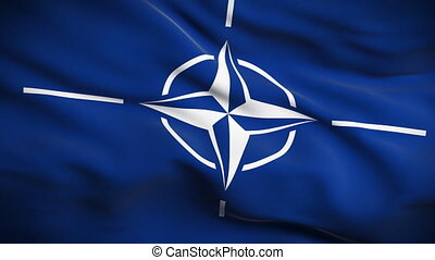 North Atlantic Treaty Organization - HD 1080. Highly...