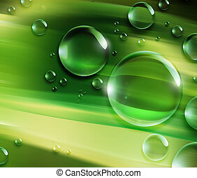dew drops on a green leaf of grass
