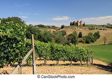 tuscan landscape - Tuscan hills, vineyards and castle...