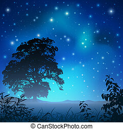 Night Sky - A Night Sky with Big Tree and Stars