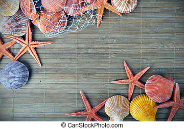 Shell and starfish frame - Marine background with space for...
