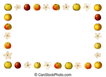 Frame with varieties of apples and apple blossoms - Frame...