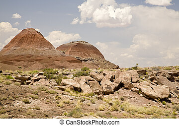 TePee Hills badlands in Petrified Forest National Park in...