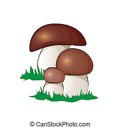 Ceps - A group of ceps mushrooms isolated on white. EPS10...