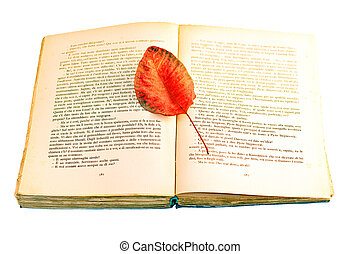 Dry leaf on a open book - Photo of Dry leaf on a open book