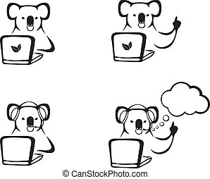 The koala with a laptop