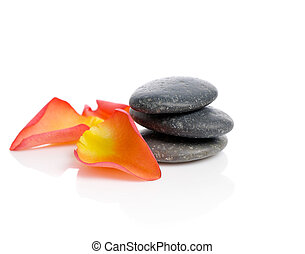 spa stones with rose petals isolated on white background
