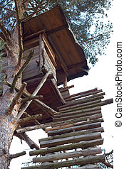 A Shooting Lodge for Hunters in Austria In A Forest