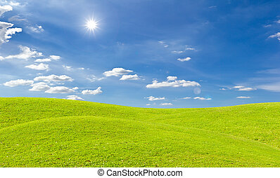 green grass meadow and bright sun in blue sky - green grass...