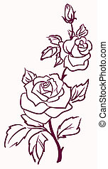 three stylized pale roses  isolated on light  background, vector illustration