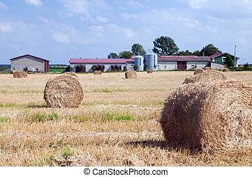 Farm buildings and haystacks