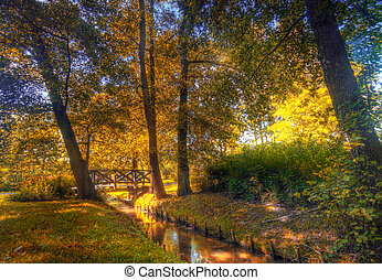 Autumn park, colorful trees and bridge