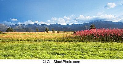 Mountains panorama - Tatra Mountains panorama