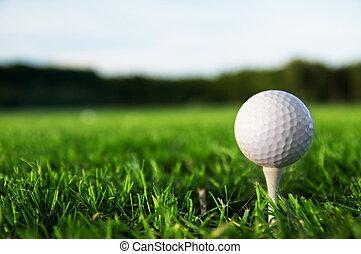 Golf ball on tee. Green grass, blue sky.