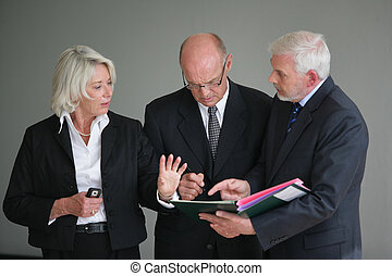 Businesspeople discussing a project
