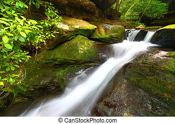 Lower Caney Creek Falls - Alabama