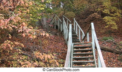 Forest staircase. - A big flight of wooden stairs in an...