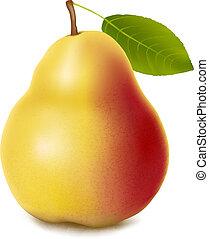Pear. Vector.