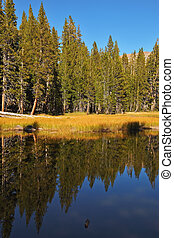 A quiet lake, surrounded by woods, in the mountains of...
