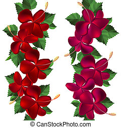 Samless border made of hibiscus flowers  on white