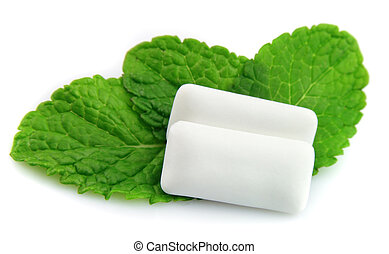 mint with chewing gum - Fresh leas mint with two chewing gum...