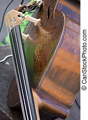 Bass - Photo of cords of bass