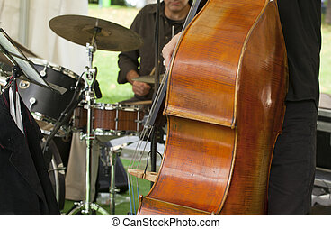 Acoustic double bass player - View of an Acoustic double...