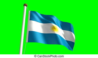 Argentina flag (Loop & green screen - 3D Argentina flag...