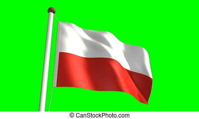 Poland flag Loop and green screen - 3D Poland flag video...