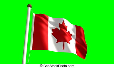 Canada flag with green screen - 3D Canada flag videoseamless...