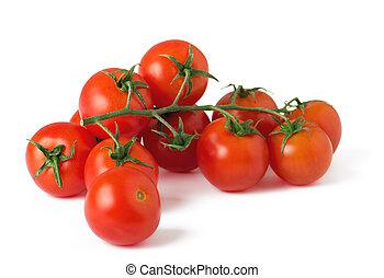 Ripe fresh cherry tomatoes on branch