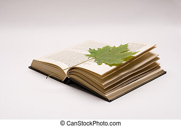 book and maple leaves - Closeup book with maple leaves...