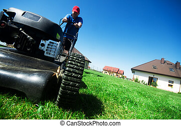 Mowing the lawn - Man mowing the lawn. Gardening
