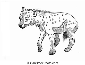 hyena cowering - ink drawing of a cringing hyena