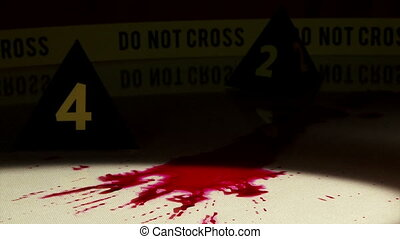 Crime Investigation, bloodstains, police markers, flashlight...