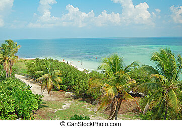 Bahia Honda beach - view of Bahia Honda beach in the Florida...