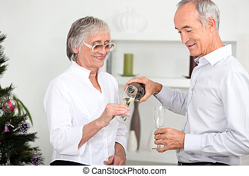 Older couple drinking champagne
