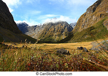New Zealand Fiordland at the Milford Sound - New Zealand...