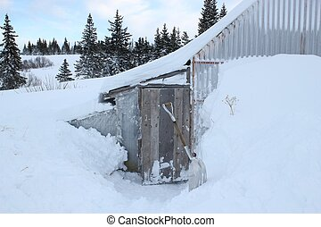Snow around the chicken coop - Snow piled up high in rural...