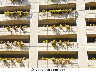 Plantings on a Parking Deck - Shrubs growing in planter...